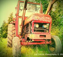 Old Tractor by DES PALMER