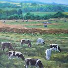 Cows In A Field In The Devon Countryside by martyee