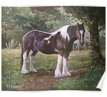 Big horse in field Poster