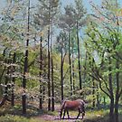New Forest with Horse in light  by martyee