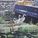Ducks on dockside by martyee