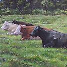 Cow line up in field by martyee