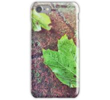 Fall Aesthetic iPhone Case/Skin