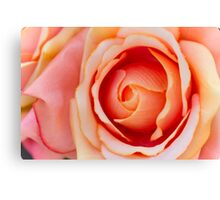 roses art of cloth Canvas Print