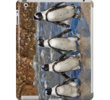 funny image of  four walking African Penguin iPad Case/Skin