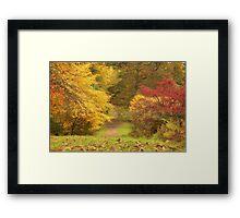 Autumn Walk` Framed Print