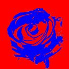 Blue Rose by Michael Birchmore