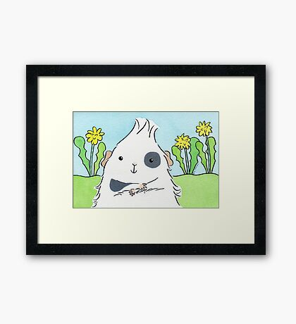 Guinea-pig With Eyepatch Framed Print