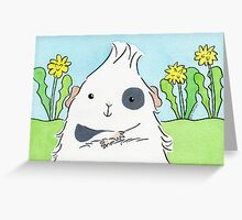 Guinea-pig With Eyepatch Greeting Card