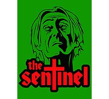 THE SENTINEL Photographic Print
