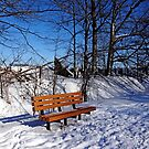 Winter Time Out by Debbie Oppermann