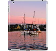 We Expected Dolphins iPad Case/Skin