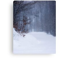 Snowbound Road Canvas Print