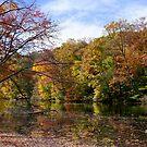 Autumn Splendor by Lanis Rossi