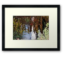 water reflection on river Framed Print