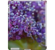 hydrangea in the garden iPad Case/Skin