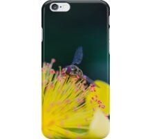 bee on buttercup in the garden iPhone Case/Skin