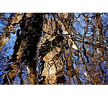 Winter Water Colors Photographic Print