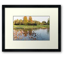 water reflection on lake Framed Print
