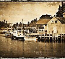 Bush Island II - textured by PhotosByHealy
