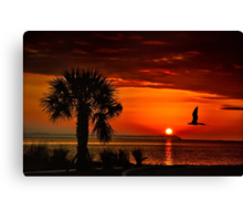 Take me to the sun Canvas Print