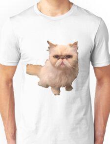 Abba The Cat Unisex T-Shirt