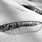 Snowbound by Debbie Oppermann