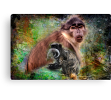 Monkeys  Canvas Print
