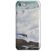 Oyster-catcher at Annagh Head iPhone Case/Skin