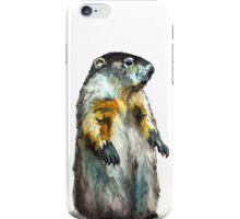 Winter Woodchuck iPhone Case/Skin