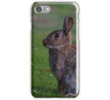 Wild Rabbit iPhone Case/Skin