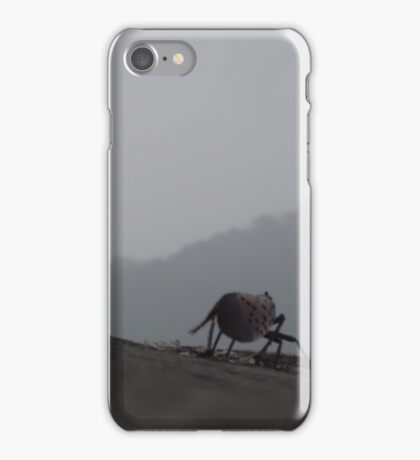 Little bug on the Great Wall iPhone Case/Skin