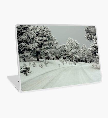 winter wonderland  Laptop Skin