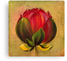 The Lotus Bulb Canvas Print
