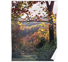 Autumn in the Ozarks #1 Poster