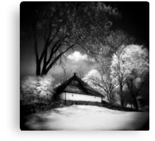 Infrared 9 Canvas Print