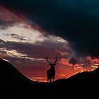 Scotland... by scottishdream