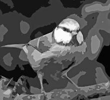 "Birds story, "" fawn paint Picasso ! "" 24 (n&b) (h) the Blue Tit - Olao-Olavia by Okaio Créations  by okaio caillaud olivier"