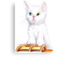 Cuddly Kitten Canvas Print