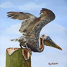 Pelican Lift-Off by Phyllis Beiser