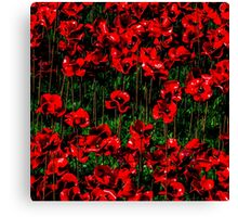 Poppy fields of remembrance for WW1 at Tower of London - square photo Canvas Print