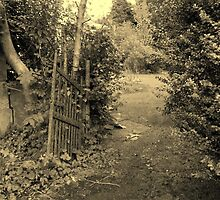 A Walk Around Hazelbank..The old garden gate...always open. by oulgundog