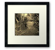 A Walk Around Hazelbank..The old garden gate...always open. Framed Print