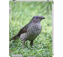 Female Bower BIrd iPad Case/Skin