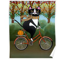 Cat on a Bicycle  Poster