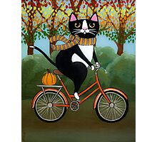 Cat on a Bicycle  Photographic Print