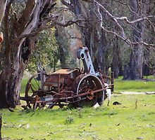 Getting ready for harvest by Colin Binks