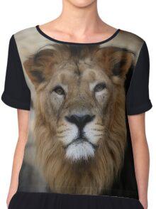 lion, portrait Chiffon Top