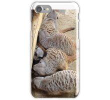 Meerkat Bundle iPhone Case/Skin