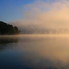 misty by Lynne Prestebak